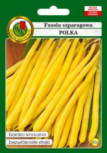Fasola szparagowa żółta karłowa Polka front