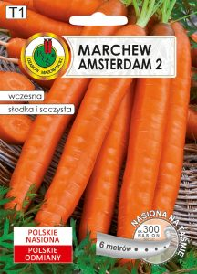 MARCHEW AMSTERDAM FRONT