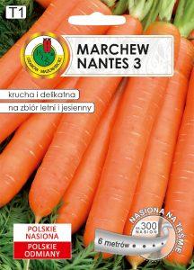 marchew nantes 3 front