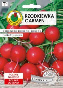 rzodkiewka carmen front
