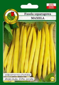 Fasola szparagowa żółta karłowa Maxela front