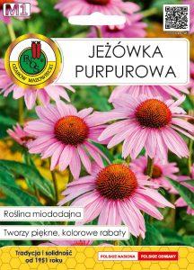 jezowka purpurowa front