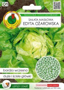 salata maslowa front