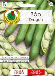 bob dragon front