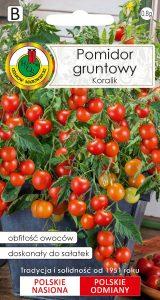pomidor gruntowy koralik front