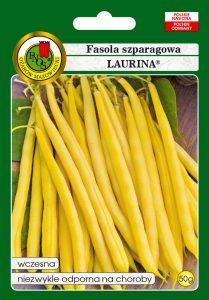 Fasola szparagowa żółta karłowa Laurina front