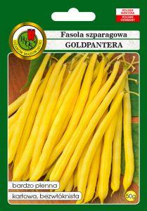 Fasola szparagowa żółta karłowa Goldpantera front