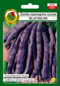 2Fasola szparagowa blauhilde front