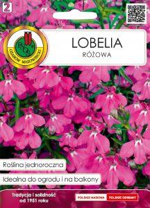 Lobelia różowa front