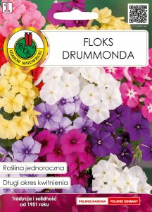 Floks drummonda front