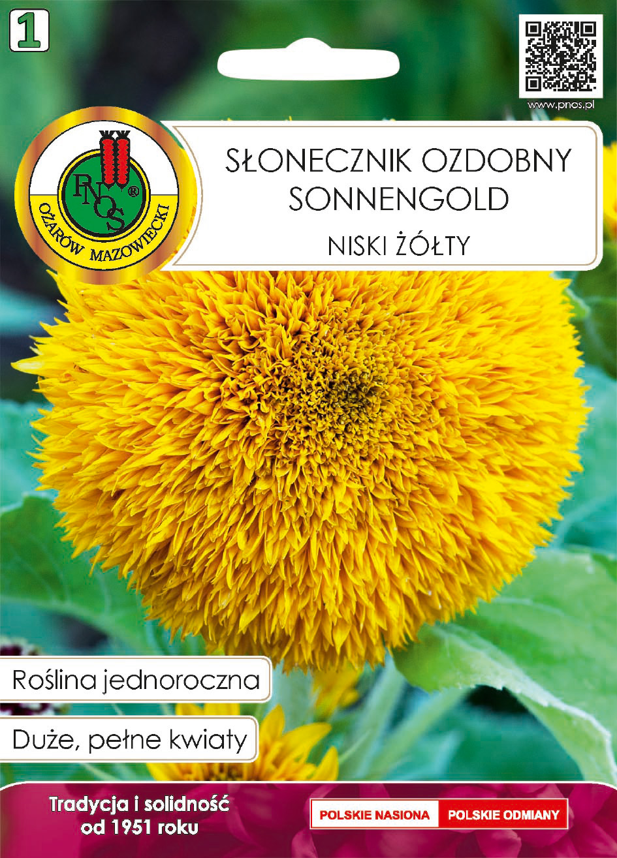 5904232188107Słonecznik ozdobny sonnengold front