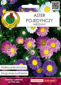 Aster pojedynczy mieszany front