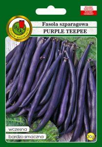 Fasola szparagowa purple teepee front