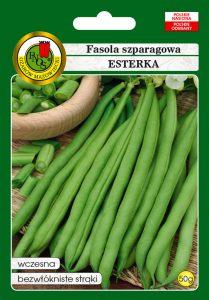 Fasola szparagowa zielona karłowa Esterka front