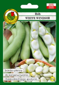 Bób White Windsor front