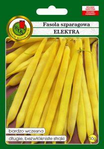 Fasola szparagowa żółta karłowa Elektra front