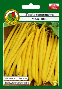 Fasola szparagowa żółta karłowa Maxidor front