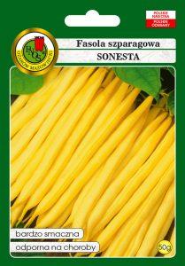 Fasola szparagowa żółta karłowa Sonesta front