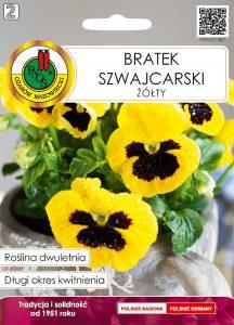 Bratek szwajcarski żółty front