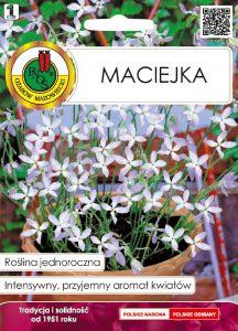 Maciejka front