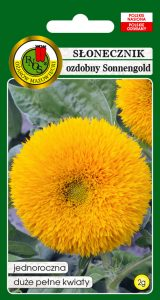 5904232105340 słonecznik ozdobny sonnengold niski żółty front