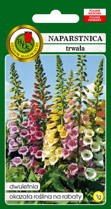 5904232109690 naparstnica trwała gloxiniaeflora mieszana front
