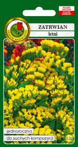 5904232167652 zatrwian letni gold coast żółty front