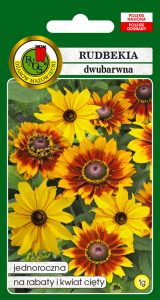 5904232168246 rudbekia dwubarwna meine freude żółto brązowa front