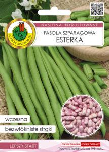 Nasiona fasoli szparagowej esterka OW-1041-16 PNOS