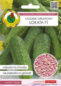 Nasiona ogórka gruntowego lokata OW-1049-16 PNOS