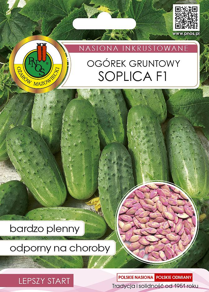 Nasiona ogórka Soplica OW-1051-16 PNOS