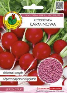 Nasiona rzodkiewki karminowej OW-1059-16 PNOS