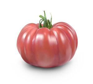 Pomidor malinowy Monterosa F1 Semillas Fito